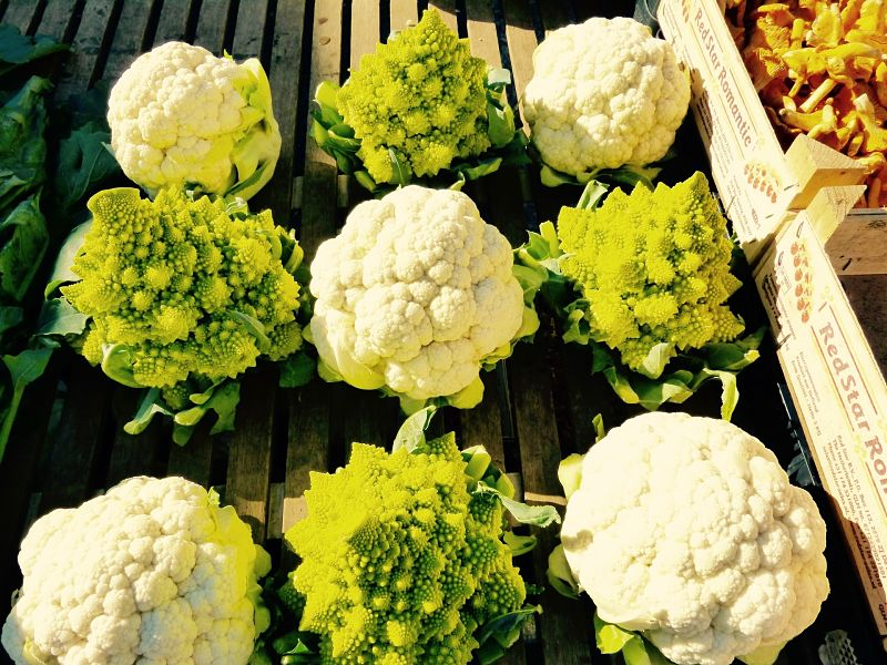 In Season Cauliflower