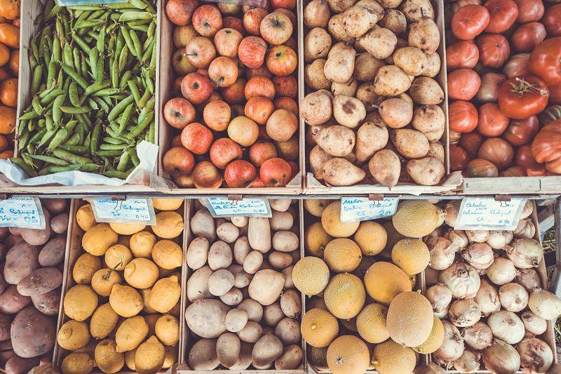 Food to Feed Good Bacteria