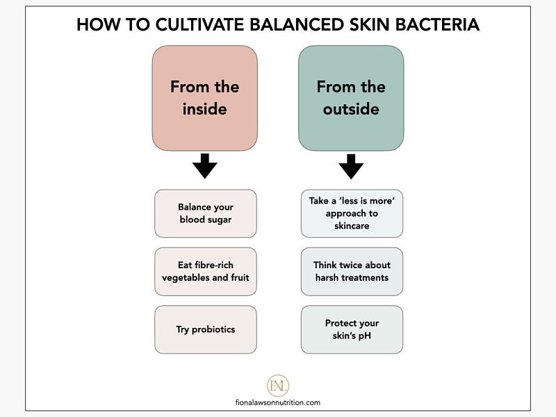 How to balance skin bacteria infographic